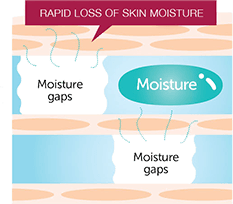 omono natural skin care moisture loss diagram